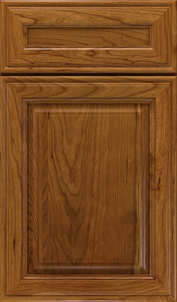Galleria 5-Piece Cherry Raised Panel Cabinet Door in Suede