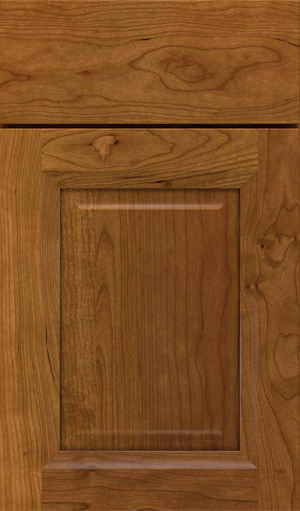 Hawthorne Cherry Raised Panel Cabinet Door in Suede