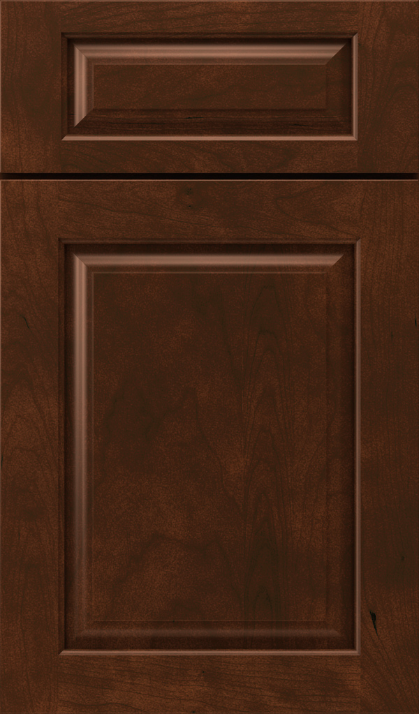 plaza_5pc_cherry_raised_panel_cabinet_door_tannery