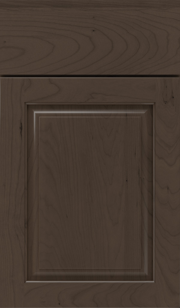 plaza_cherry_raised_panel_cabinet_door_shadow