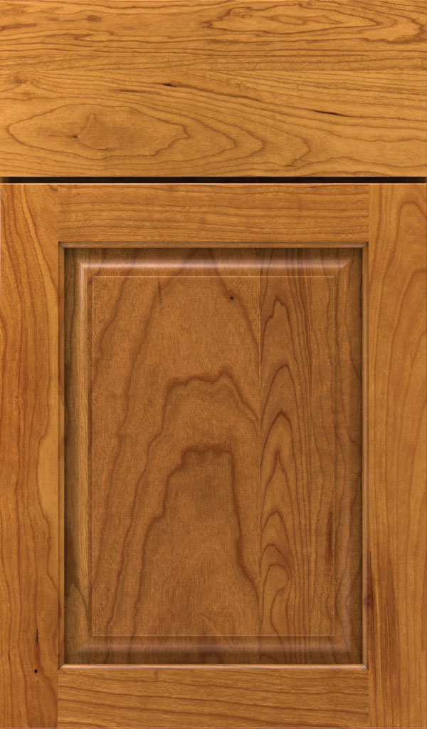 Plaza Cherry Raised Panel Cabinet Door in Wheatfield Bronze