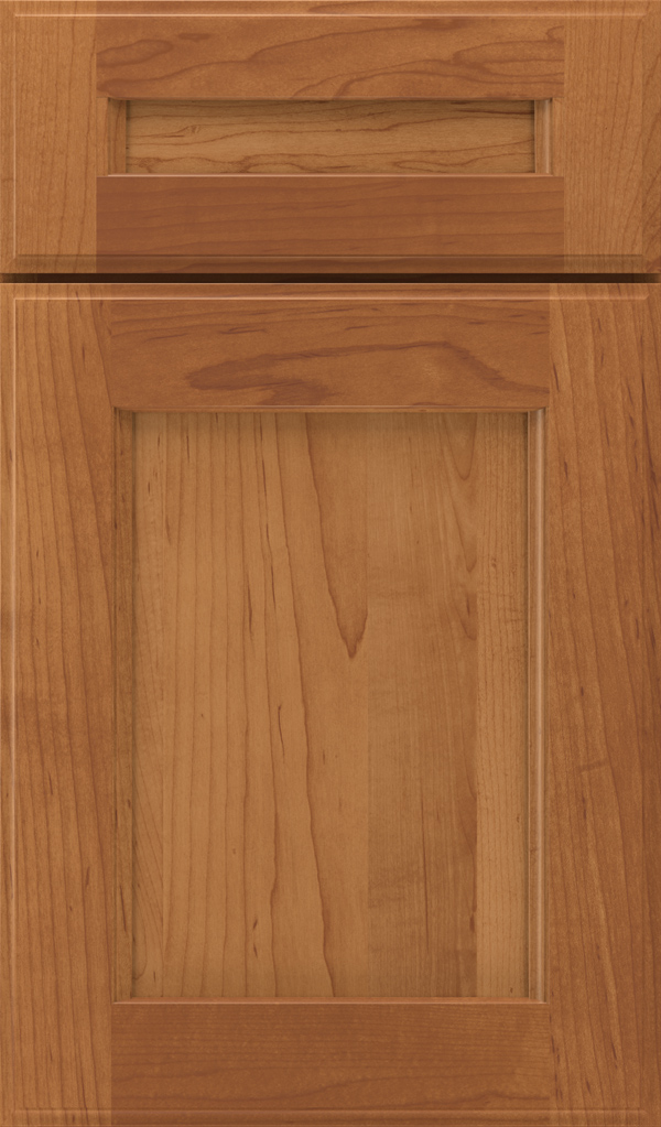 treyburn_5pc_maple_recessed_panel_cabinet_door_suede